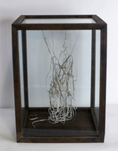 Convoluted #1, wood, glass, paper, thread, nylon, metal
