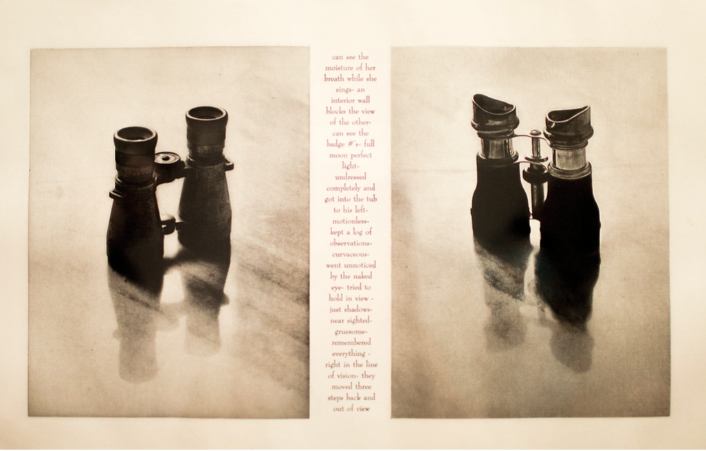 Detail of Lorna Simpson's Two Pairs (Binoculars), photo by Mariana Mora