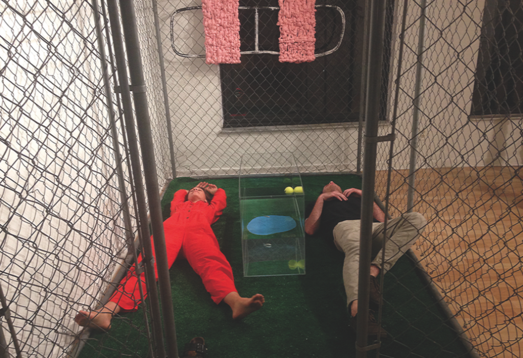 cage thing, astroturf, metal, plexiglass, tennis ball, foam, rubber, one minnow